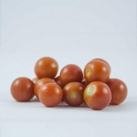 Champu solido cabello normal de comercio justo
